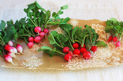 Tiny Veggies™ Radish MIx