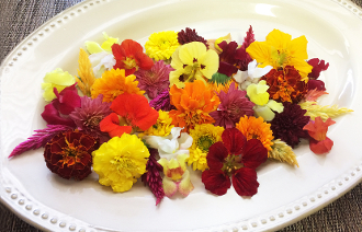 Flower Premium Fall Flowers Mix