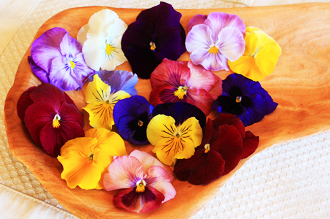 Flower Pansy Mix ***