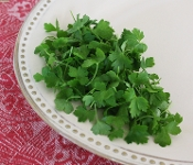 Micro Parsley Italian