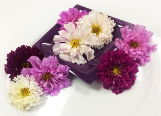 Flower Cosmos Mix 50 Ct