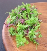 Micro Fines Herbs Mix™