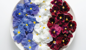 Flower Pansy Red, White, & Blue Mix 50 Ct